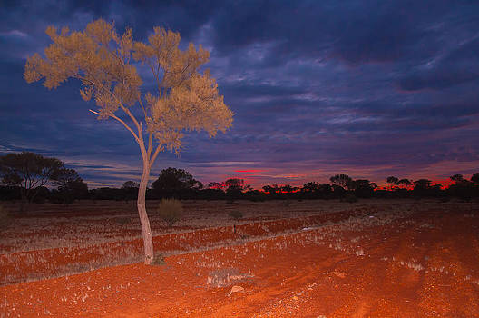 Outback Dusk by Ross Carroll