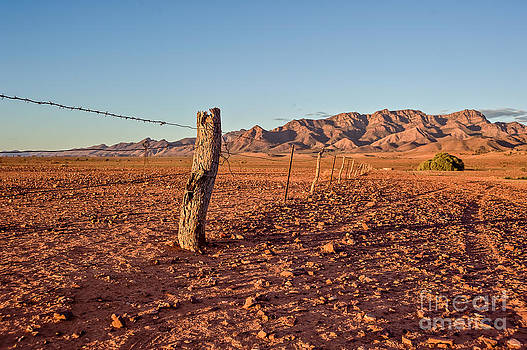 Outback Fence by Ray Warren