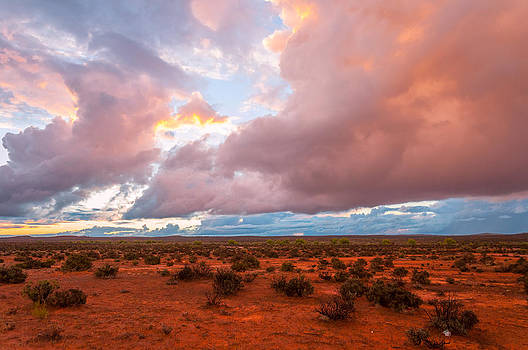 Outback Post Storm by Ross Carroll
