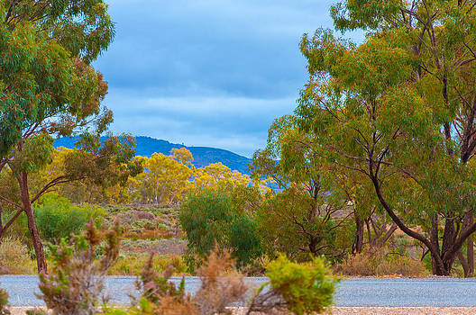 Outback Road Colours by Ross Carroll