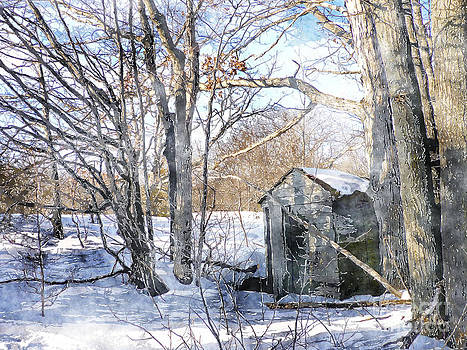 Outhouse in Winter by Claire Bull