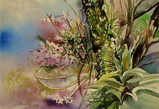 Outrageous Orchids by Kitty Harvill