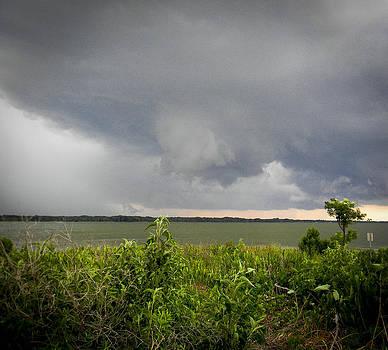 Christy Usilton - Over Lake Eustis