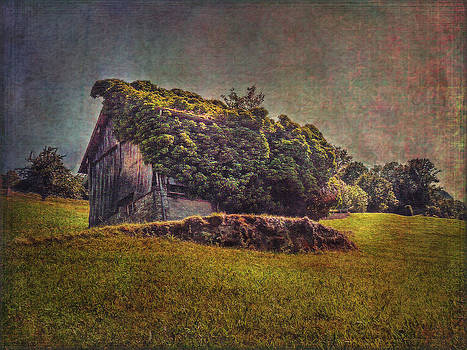 Overgrown Barn by Hanny Heim