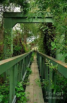 Overgrown Footbridge 2 by James B Toy