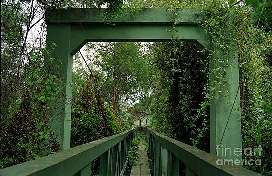 Overgrown Footbridge 1 by James B Toy
