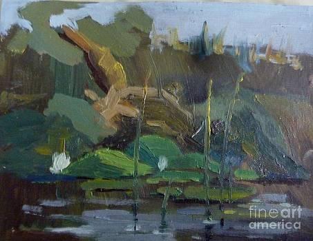 Overgrown Shore by Victoria  Tekhtilova