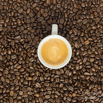 Overhead View Of Espresso Coffee On Beans by Gillian Vann
