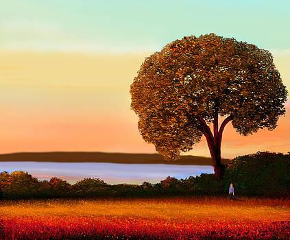 Overlook by John Townes