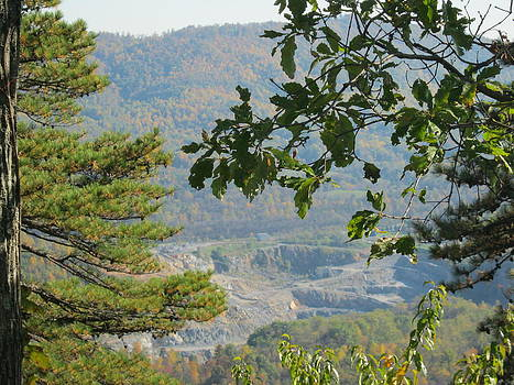 Overlooking An Old Quarry by Sarah Manspile