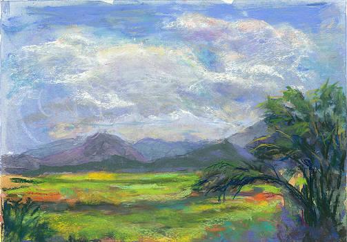 Overlooking Hamakua Marsh by Jennifer Robin