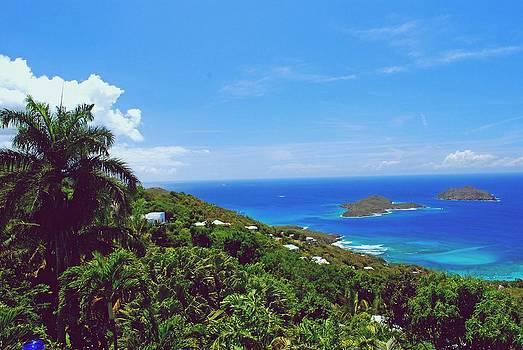 Gary Wonning - Overlooking Paradise