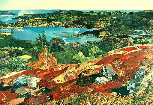 Overlooking the Bay by Robin Birrell