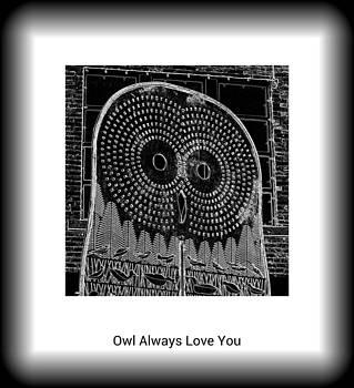 Daryl Macintyre - Owl Always Love You