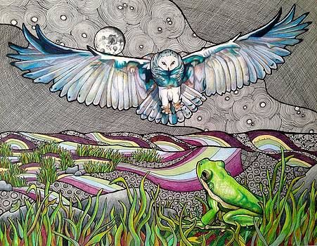 Owl and Frog by Amy Frank