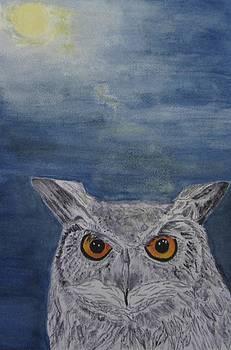 Owl by moonlight by Elvira Ingram