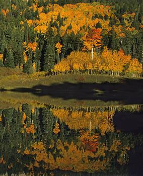 Susan Rovira - Owl Creek Pass Fall 1