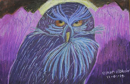 Owl by Ethan Altshuler