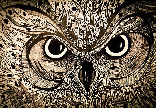 Nathan Newman - Owl Eyes