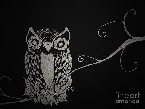 Owl by Ginny Youngblood