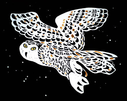 Owl In Night Sky by Vadim Vaskovsky