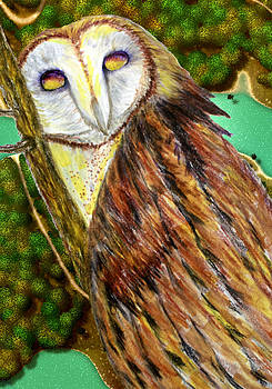 Owl Mixed Media by Barbara Giordano