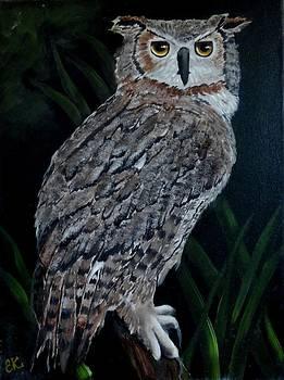Owl by Fineartist Ellen