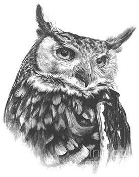 Owl Study by Marisa Salazar