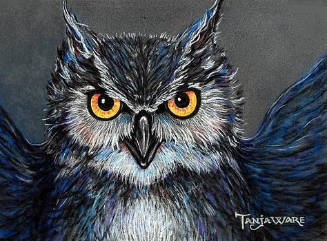 Owlish by Tanja Ware