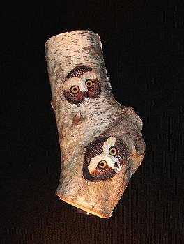 Owls Carved in Birch by Donna Genovese