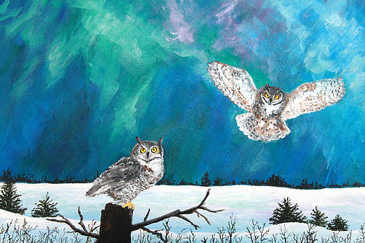Owls Under the Northern Lights by Amy Scholten