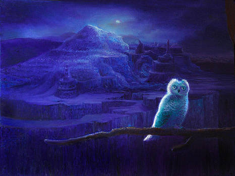 Owly by Andy Nugent