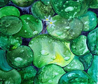 Patricia Beebe - Oz Lily Pads