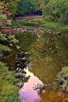 Ozark Creek by Larry Bodinson