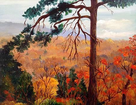 Ozark Mountain View by Martha Efurd