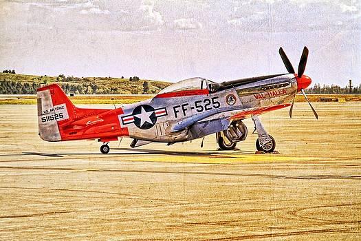 P-51 Mustang by Dan Quam
