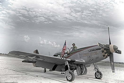 P-51 Mustang Fighter by Joenne Hartley