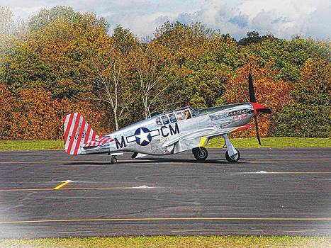 Joe Duket - P-51 Mustang