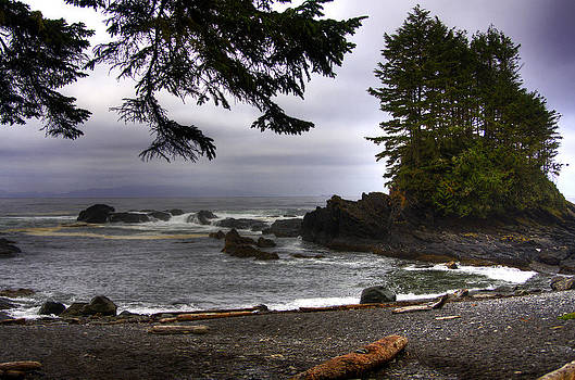 Pacific Beach by Allan MacDonald