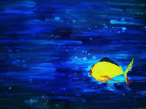 Pacific Blue by Chris Cloud