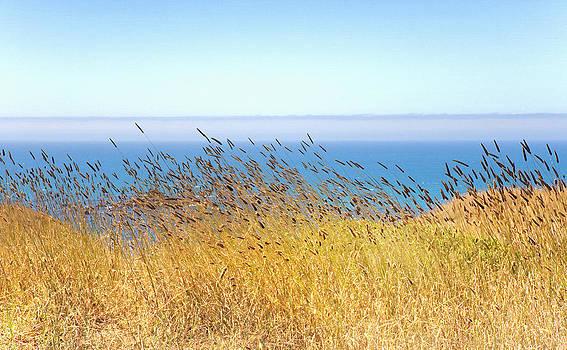 Daniel Furon - Pacific Breeze Sonoma Cliffs