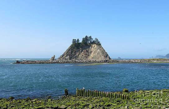 Pacific Coast at La Push by Gayle Swigart