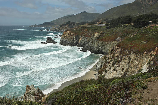 Pacific Coastline  by Gail Maloney