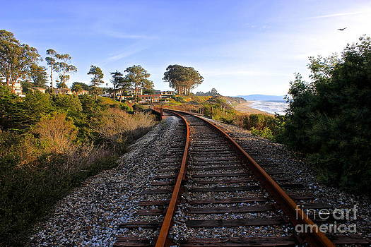 Pacific Rail by Shannan Peters
