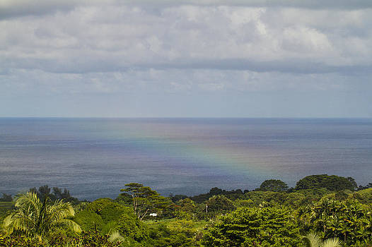 Pacific Rainbow by John Ferrante