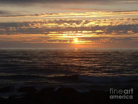 Pacific Sunset Oregon by Greg Cross