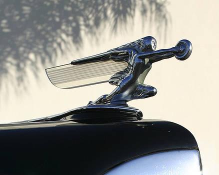 Guy Shultz - Packard Flying Lady