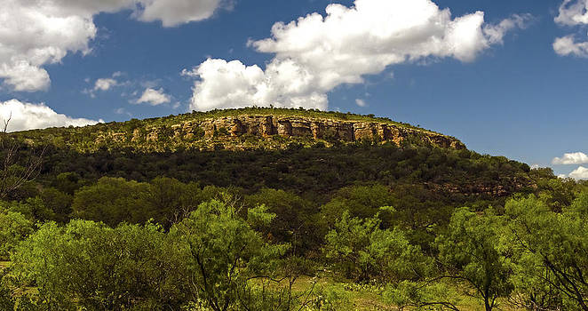 Packsaddle Mountain Texas by Greg Reed