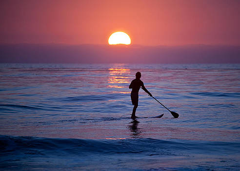 Paddle Boarder by Scott Harms