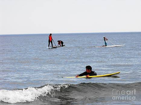 Paddle  Boarding by Lisa Gifford